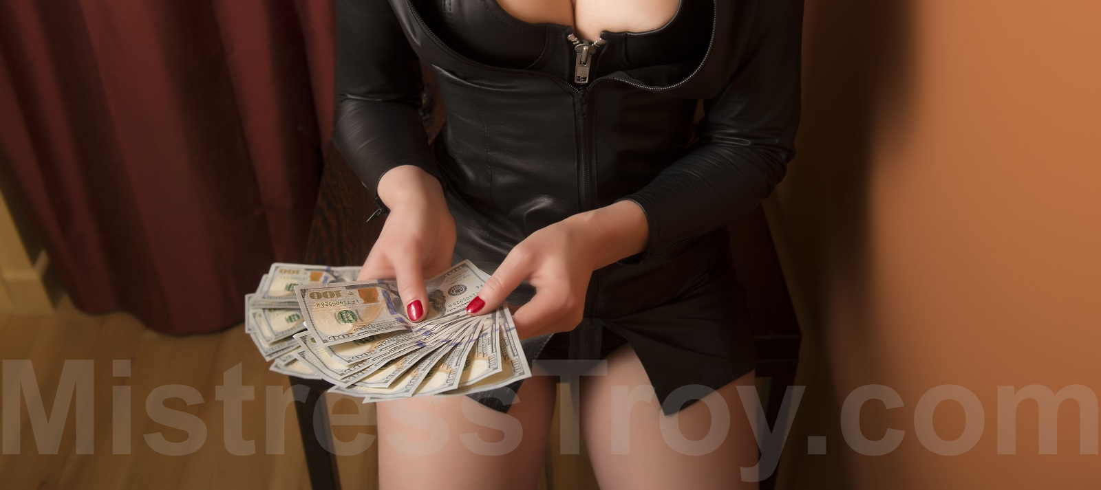 Dominatrix financial domination